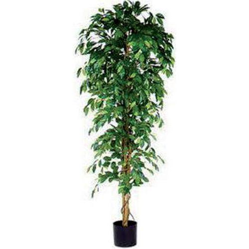 Kunstplant Ficus Benjamina 210cm excl. sierpot - Vepabins