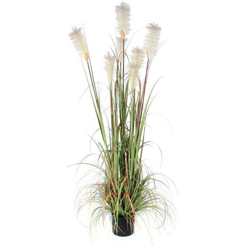 Kunstplant Pluimgras Foxtail 180cm - Vepabins