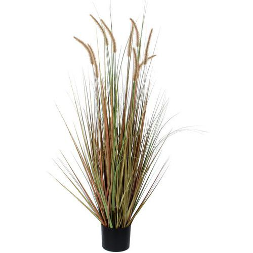 Kunstplant Pluimgras Dogtail 120cm - Vepabins