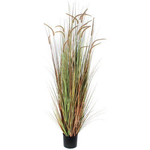 Kunstplant Pluimgras Dogtail 180cm - Vepabins