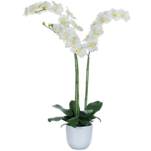 Kunstplant Phalaenopsis orchidee 100cm - Vepabins