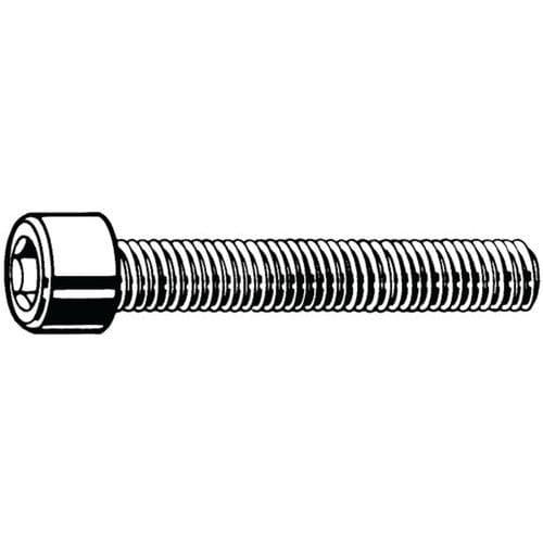Cilinderschroef met binnenzeskant voldraad RVS A2 70_51020
