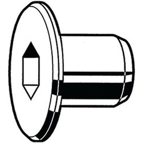 Moer vlak met binnenzeskant type RF Messing Vernikkeld Open_14483