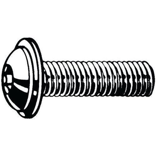 Laagbolkopflensschroef met binnenzeskant RVS A2 Rechts_51028